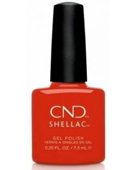 Shellac Hot Or Knot